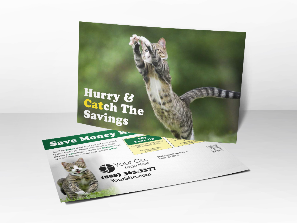 'Hurry & Catch The Savings' Cute Kitten Postcard - Front & Back