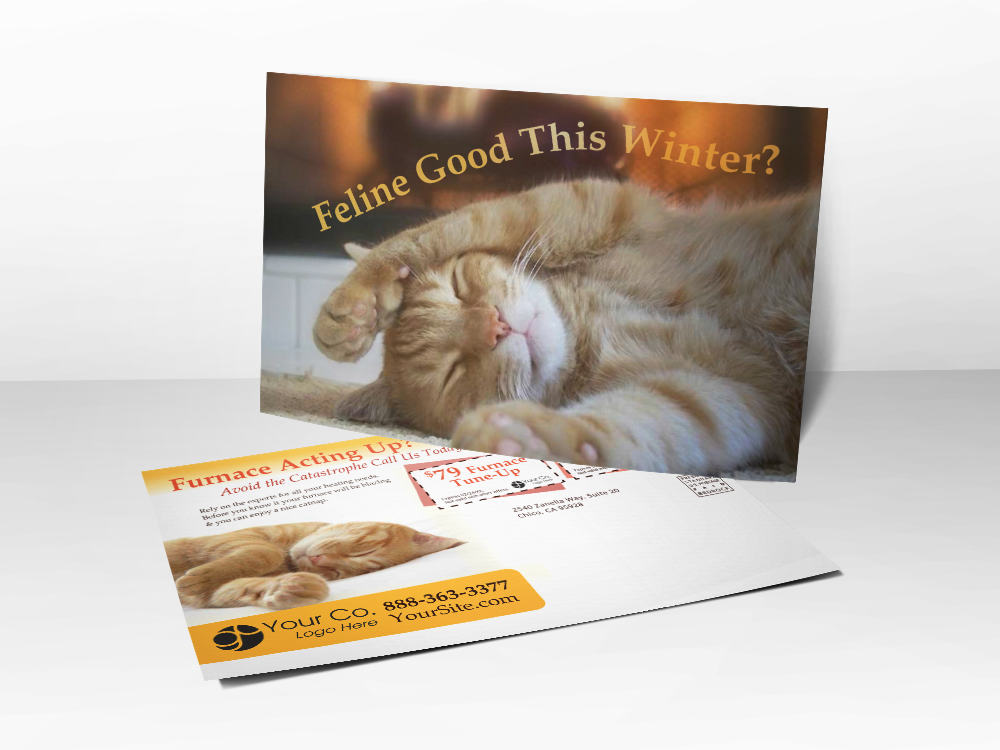 'Feline Good This Winter' Warm Kitty Postcard - Front & Back