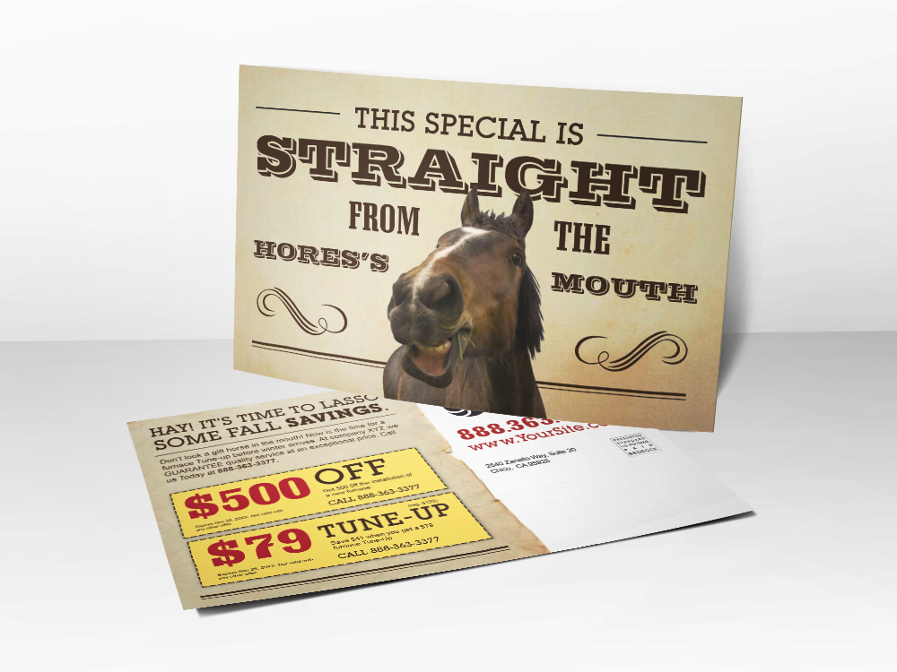 'Straight From The Horses Mouth' HVAC Postcard